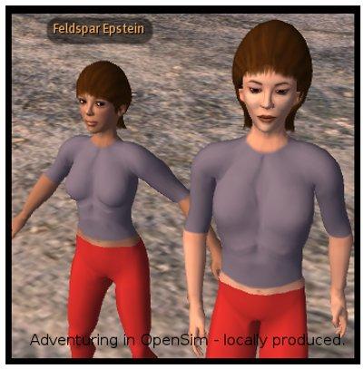 Taken in an OpenSim sim.