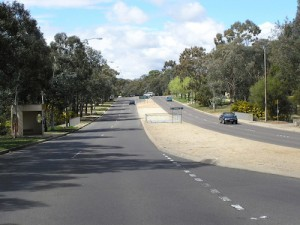 Droves of pollies are burning a path to Belconnen, Dim Sim capital of the ACT