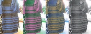 https___www_scimex_org_newsfeed_explaining-the-colour-of-the-dress_Perspectives-on-The-Dress_Current-Biology_correspondence-3_pdf