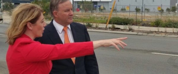 Albo Dreams of the Future
